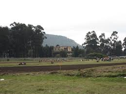 Mass grave uncovered in Janmeda military barrack, Addis Ababa