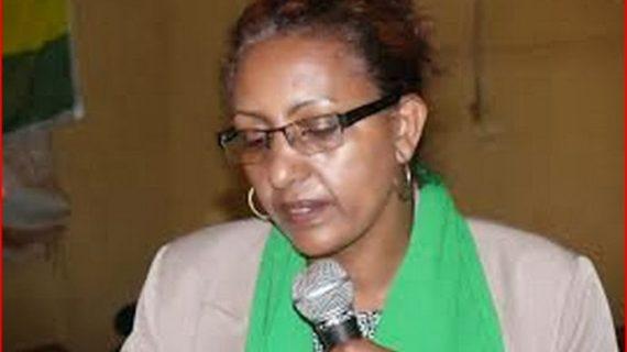 Ethiopia : interview with Zenebu Tadesse