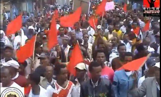 UDJ Demonstration in Addis Ababa