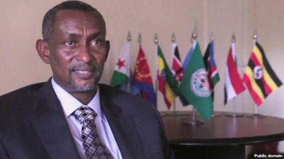 "VOA Amharic report on IGAD 's secretary comment – ""Stupid"" (Audio)"