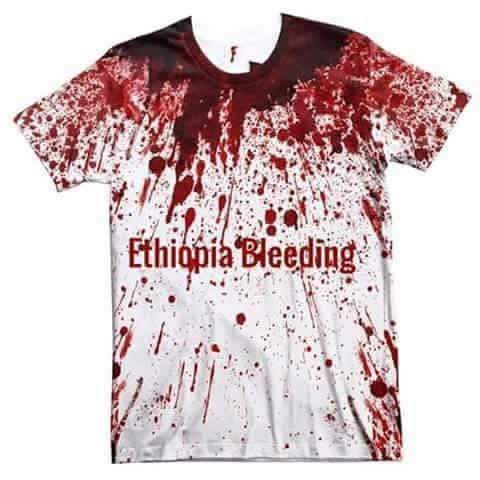 Graphics prepared by Ethiopian Activists to honour all those killed by TPLF forcessince yesterday