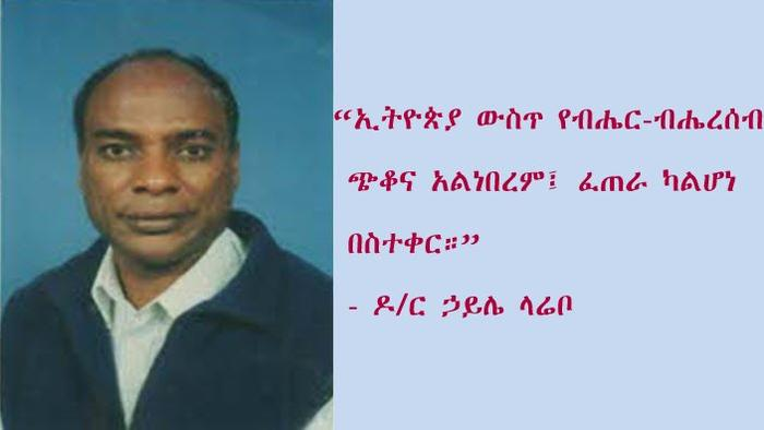 Dr. Haile Larebo  Source : SBS Amharic