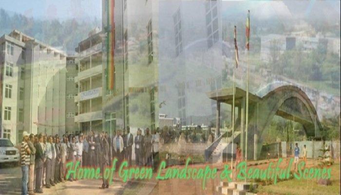 Jimma University campus Source : Jimma University Website