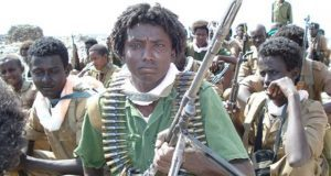 ARDUF fighters  Source :ESAT