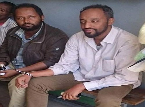 Zigzag activism from Ethiopian activists need to be combated