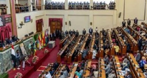 Ethiopian Parliament  - Pharmaceuticals Fund and Supply Agency