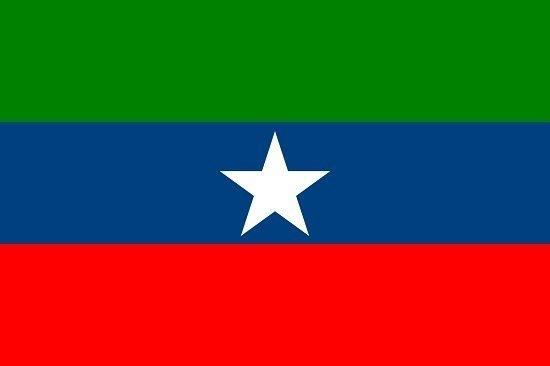 Ogaden National Liberation Front  flag