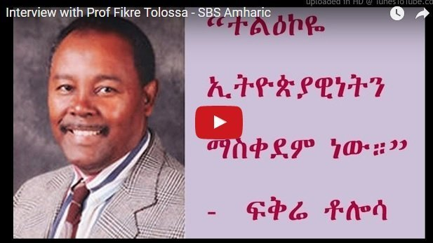 Interview with Prof Fikre Tolossa – SBS Amharic