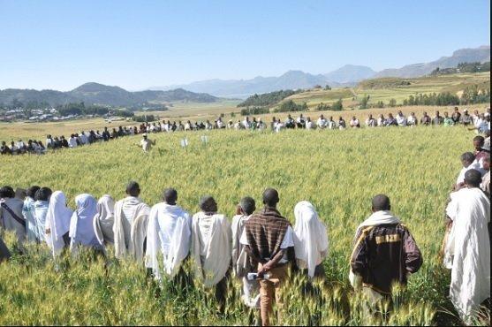 Development Tigray - Ethiopia