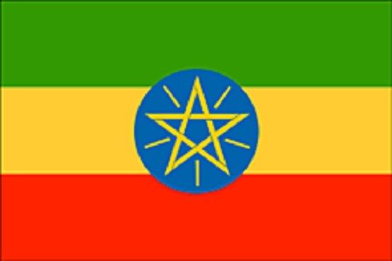 Ethiopia public service - ethnicity