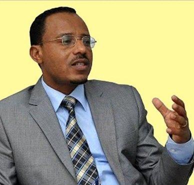 Lema Megerssa -Ethiopiawinet -Ethiopia