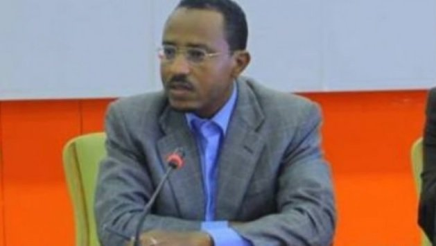 Lemma Megersa's warning on the situation in Western Ethiopia