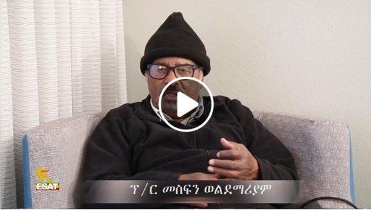 Professor Mesfin Woldemariam interview with Reyot Alemu
