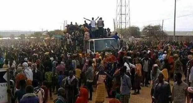 Somali-Oromo conflict - Ethiopia