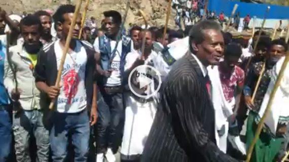 Ethiopian Music : Raya chifera -Wollo