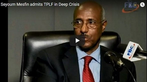 Seyoum Mesfin says TPLF is facing unprecedented danger