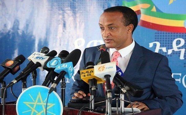 Diaspora Agency _ Ethiopia