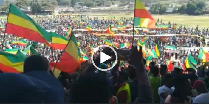 Ginbot 7 gets warm reception in Adama, Oromo region of Ethiopia