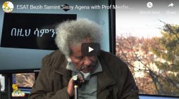 Professor Mesfin's remarks on the situation in Ethiopia