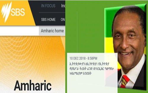 Al Mariam (from Ethiopian Diaspora Trust Fund) interview with SBS Amharic