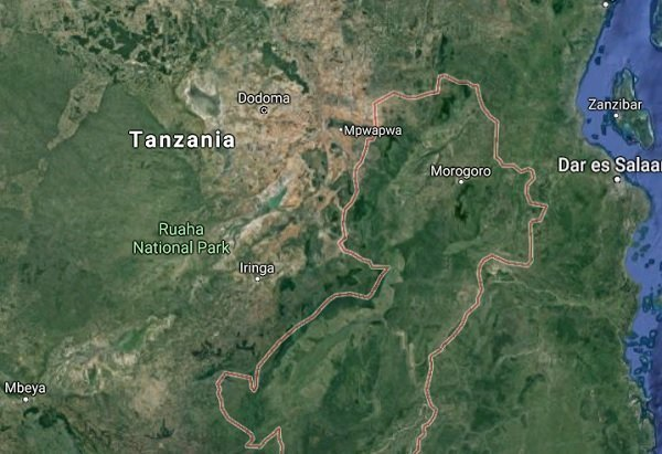 Google Map _ Tanzania