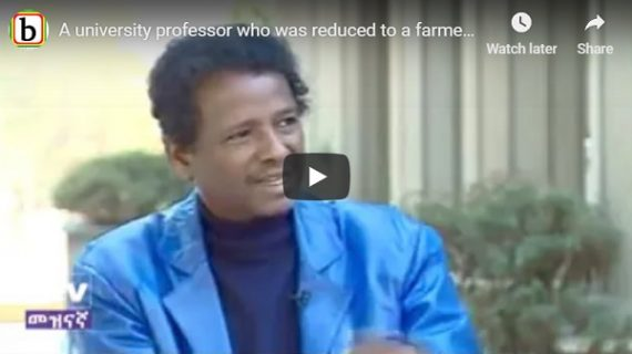Mindaralew Zewde  : A university professor who was reduced to a farmer