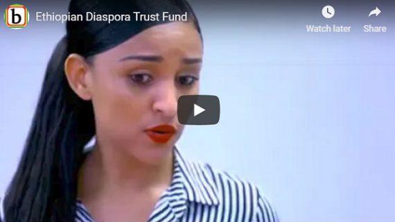 Senselet Drama actors promoting Ethiopian Diaspora Trust Fund