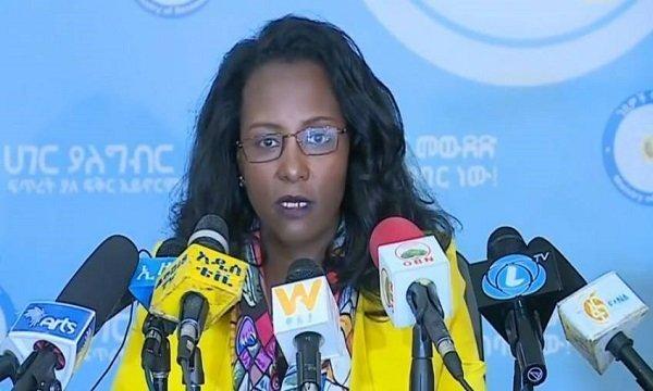 Adanech Abebe _ tax evasion