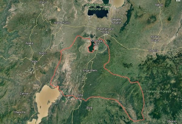 Crimes of Sidama Extremists in Awassa and What Must be Done to