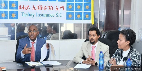 Tsehay Insurance offering new service for Ethiopian Diaspora