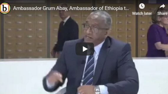 Grum Abay, Ambassador of Ethiopia to the EU talks about the change
