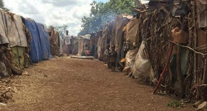 Ethiopia living tragic humanitarian situation in Gedeo region, under-reported