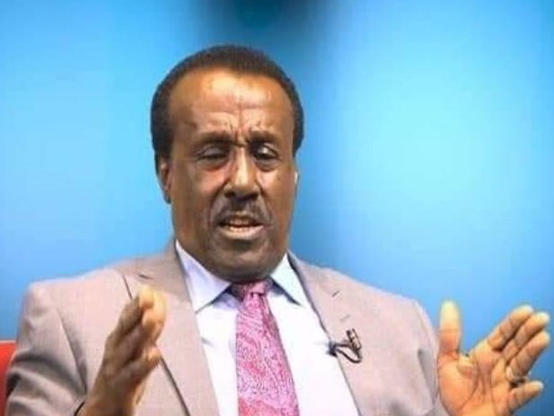 Ethiopia : A Country on the Brinks (By Dawit Woldegiorgis)