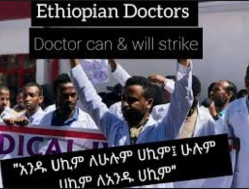 Ethiopian Medical Doctors: Stand with the poor People of