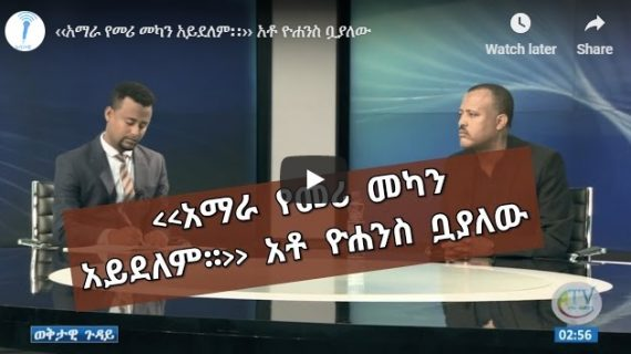 ADP office head Yohannes Buayalew : Amhara does not have leadership sterility