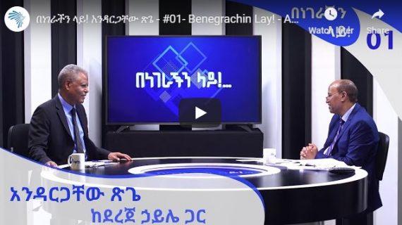 Andargachew Tsige's remark on the situation in Ethiopia