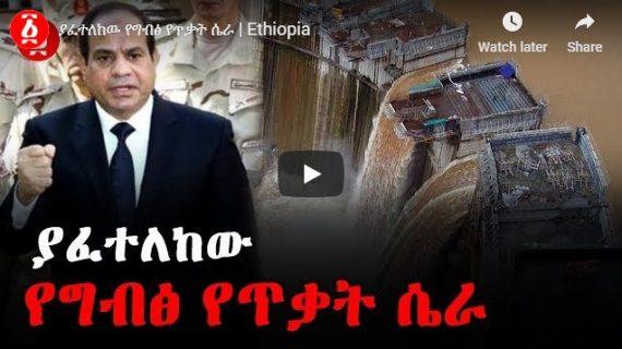 Leaked Egyptian plot to attack Renaissance Dam
