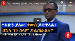 Ethiopia's crisis will continue for some time but peace will prevail, says Mulugeta Aregawi