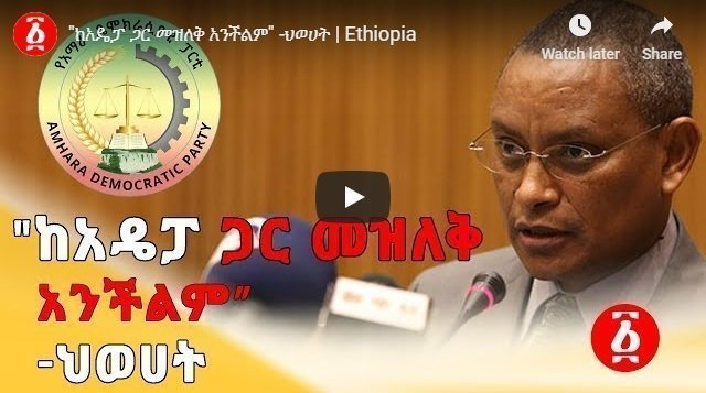"""TPLF : """"Difficult to continue with Amhara Democratic Party"""""""