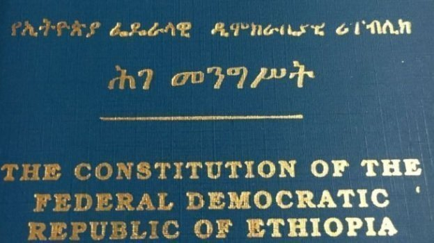 The constitution should be changed unconstitutionally (Shiferaw Abebe)