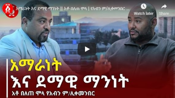 Interview with National Movement of Amhara (NaMA) vice-chairperson