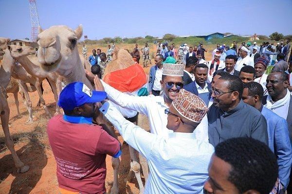 Somali-Oromo engagement forum in Jijiga, Togowuchale, and Degahabour