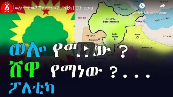 Claims over Shewa and Wollo – politics
