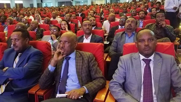 Amhara Intellectuals Council