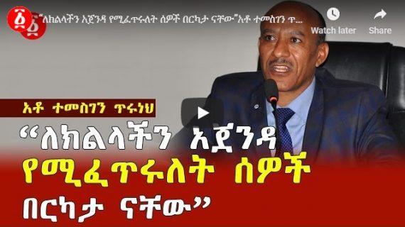Amhara region president Temesgen Tiruneh speaks out