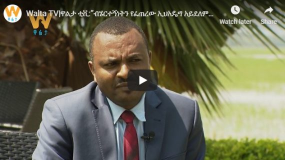 Walta TV interview with SEPDM office head – Moges Balcha