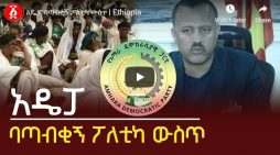 Amhara Democratic Party, political challenge