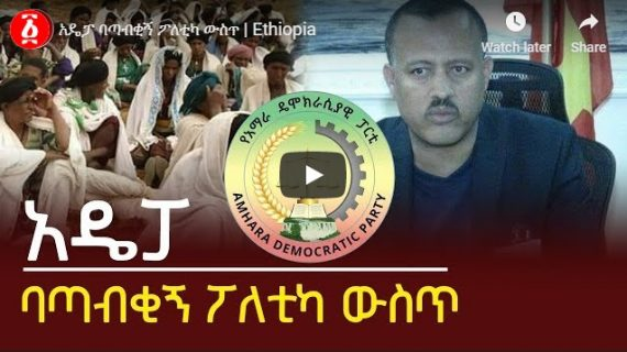 Amhara Democratic Party, political challenge