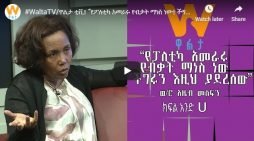 Azeb Mesfin interview with Walta Television