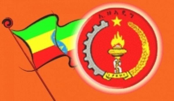Ethiopia's ruling coalition council to approve executive committee decision